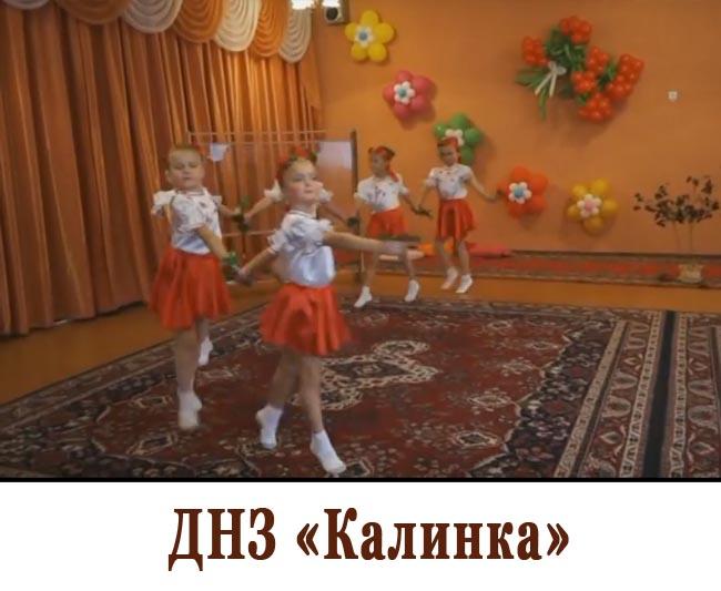 ДНЗ Калинка